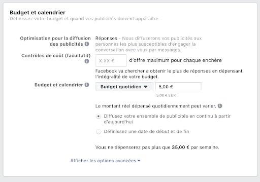 Budget et calendrier Facebook Ads