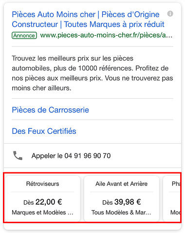 extention-prix-google-Ads